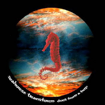 Seahorse Transform - Dust From A Trip