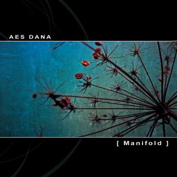 Aes Dana - Manifold