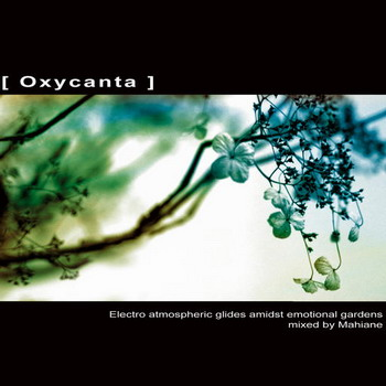 Oxycanta