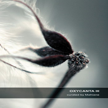 Oxycanta III