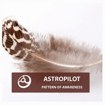 Astropilot - Pattern Of Awareness
