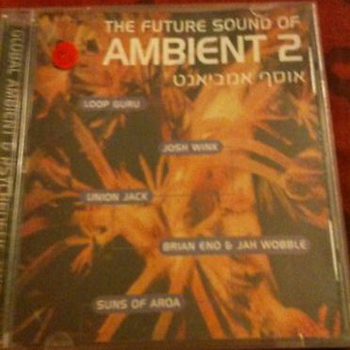 The Future Sound Of Ambient 2